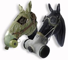 World War I horse gas masks. Never thought about the horses!!