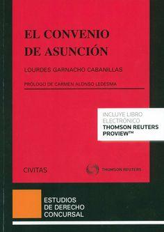 El convenio de asunción / Lourdes Garnacho Cabanillas; prólogo de Carmen Alonso Ledesma. -  Cizur Menor (Navarra) : Civitas-Thomson Reuters, 2014