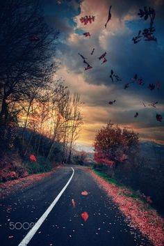 Road of wind.. by Makis Bitos on 500px