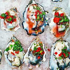Oysters on the Half Shell with Chile, Cilantro, and Meyer Lemon Salsa Recipe