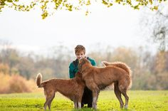© Jenny Karlsson Photography  | Daily Dog Tag | touching photo of woman and 2 dogs