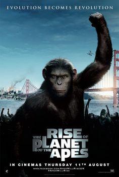 Rise planet apes