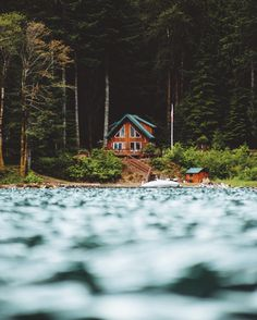 Focus. by Nick Verbelchuk on 500px