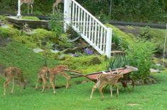 Elm Grove, WV  ...  You have such a beautiful yard, Faith!!!