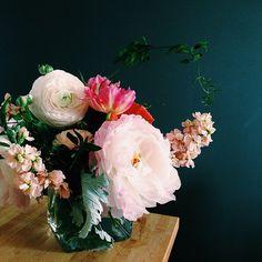 ZsaZsa Bellagio – Like No Other: Pretty in Pink!