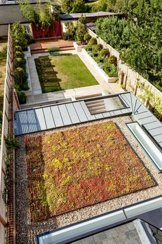 sedum-roof-basement-extension