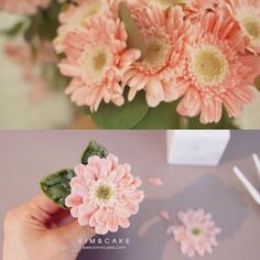 A gerbera means mystique in the language of flowers pictures from Naver.com…