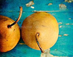 Still life Photography, Kitchen art print, Bosc Pear print, blue and brown summer fruit imagery