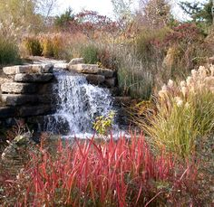 Fall is a beautiful time to explore the region and capture the beauty of the season. Get outside and enjoy a hike at the Overland Park Arboretum & Botanical Gardens. Generally the best time to experience the essence of fall in Overland Park is mid to late October.