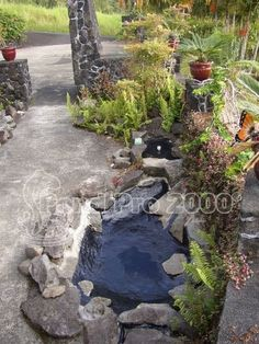 Fish pond liner a temporary or permanent fix a well for Temporary koi pond