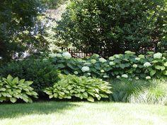 Backyard Landscapes | Western DuPage Landscaping