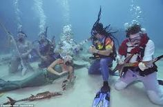 More than 500 divers and snorkelers descended Saturday in the Florida Keys National Marine Sanctuary for an underwater concert. The Underwater Music Festival is… Key West Florida, Florida Usa, Florida Keys, Beatles, Underwater Music, Water Pictures, Beyond The Sea, Festivals Around The World, Beach Shack