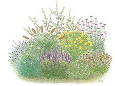 Kleines Sonnenbeet Maximale Wirkung auf kleiner Fläche:   Diese Staudenkollektion mit satten Blütenfarben und verschiedenen Höhen sorgt für...