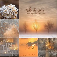 december, make my wishes come true (christmas photos scene) Hello December Tumblr, Hello December Images, Hello Winter, Winter Love, Winter Banner, Mood Colors, Colours, Winter Christmas, Christmas Time