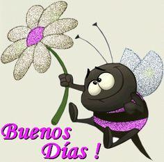 Linda abejita negra con una flor te da los Buenos Días!