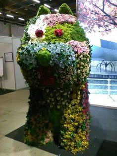Japanin osaston kukkakoira.