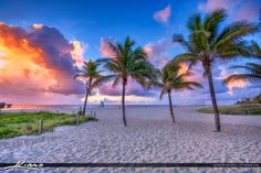 Beautiful cloud colors at the Pompano Beach Pier with a set of coconut trees along the beach. HDR image tone mapped using Photomatix Pro and Topaz software.