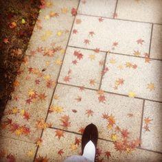 往事悠悠以成空,秋月并花容。芒鞋踏遍石桥东,行步亦从容。