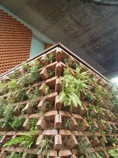 Bricks Vertical Garden Design Photos (May have to try this! Several types of plants to populate it come to mind!)