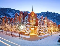 St. Regis Aspen Resort, one of the most luxurious, dog friendly locations in Aspen CO, a ski enthusiast dream.  you can bring your dog for a pampered stay.try the new skijoring ski adventure with pup! and then relax in 5 diamond comfort under the stairs on Rocky Mountain High.