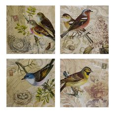 4-Piece Kincaid Bird Canvas Art Set