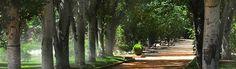 Parque Federico García Lorca, Granada, en Waste magazine El parque de garcia lorca