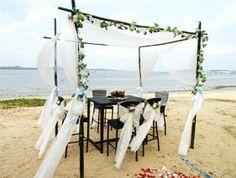 Canopy on the beach