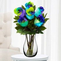 Celebration Roses | Tri-Colored roses | TheUltimateRose.com