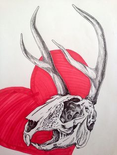 eny can draw | Day 6 is a jackalope skull! Fact of the day: a...