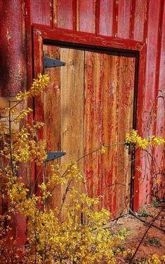 palette, colour, warm, red, wood