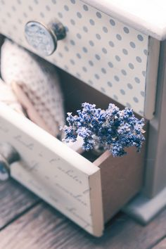 Bunch of dry lavender by oksix on Creative Market