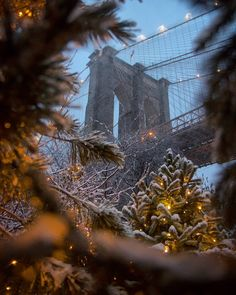 16 Ideas New York City Photography Winter Brooklyn Bridge For 2020 New York Photography, Winter Photography, Nature Photography, Christmas In The City, New York Christmas, Winter Christmas, Xmas, Photographie New York, New York Winter
