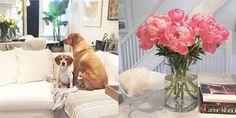 Take A Look Inside Meghan Markle's Toronto Home