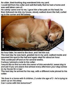 adorable story to a great captured moment.