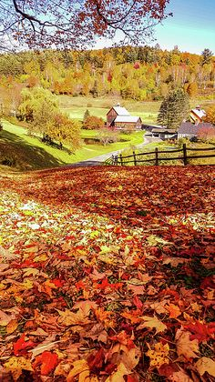 Sleepy Hollow - Pomfret Country life in autumn. Vermont, New England Fall, Nature Posters, Autumn Scenes, Autumn Art, Autumn Leaves, Autumn Photography, Fall Pictures, Mountain Landscape