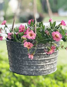 Long Blooming Flowers For Months of Color Volle Sonne Container Pflanzen Calibrachoa Full Sun Container Plants, Container Herb Garden, Full Sun Plants, Sun Loving Plants, Container Gardening Vegetables, Container Flowers, Succulent Containers, Vegetable Gardening, Blooming Flowers