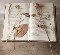De making of Pocket Herbarium