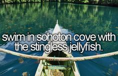 Swim in sohoton cove with the stingless jellyfish