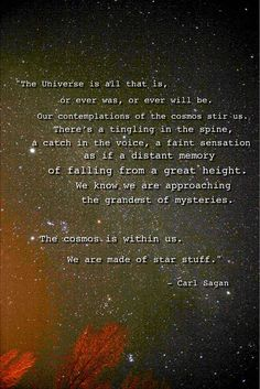 Yes...one of my favorite men and scientist and philosophers...yes...we are star stuff...