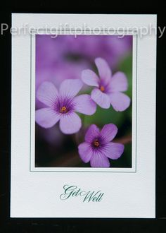 Get Well Greeting Card by PerfectGiftPhoto on Etsy