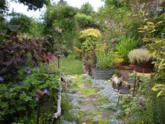 Floral path---Gardening With Grace: From Slump to Jump