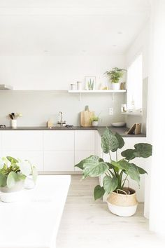 75 Small Apartment Kitchen Decorating Ideas - home/interior: accessoiries and things. - home decor Beautiful Kitchens, Scandinavian Kitchen, Home Kitchens, Minimalist Kitchen, Modern Kitchen Interiors, Apartment Kitchen, Small Apartment Kitchen, Kitchen Decor Apartment, Kitchen Design