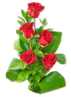 "Photo from album ""Красные розы"" on Yandex. Rose Flower Wallpaper, Butterfly Wallpaper, Beautiful Rose Flowers, Exotic Flowers, Exotic Plants, Art Design, Pretty Wallpapers, Belle Photo, Trees To Plant"