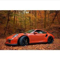 GT3 RS                                                                                                                                                                                 More