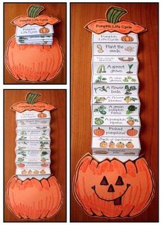 life cycle of a pumpkin, pumpkin crafts, pumpkin life cycle, pumpkin emergent reader,