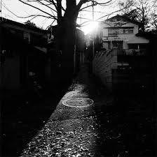 奈良原一高