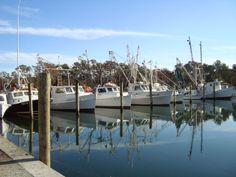Marina on Harker's Island, NC