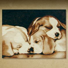 Gallery 4 Pyrography Illustrations by Cate McCauley