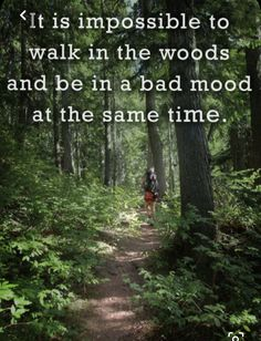 """John Muir Quotes, Hiking Quotes, Adventure Quotes, Wanderlust Quotes, """"The clearest way into the Universe is through a forest wilderness. Forest Quotes, Nature Quotes, Into The Woods Quotes, Walk In The Woods, The Journey, New Beginning Quotes Fresh Start, John Muir Quotes, Hiking Quotes, Travel Quotes"""