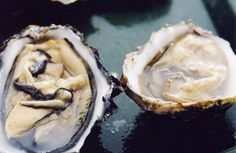 The Feedback Loop Of Oyster Production And Disease